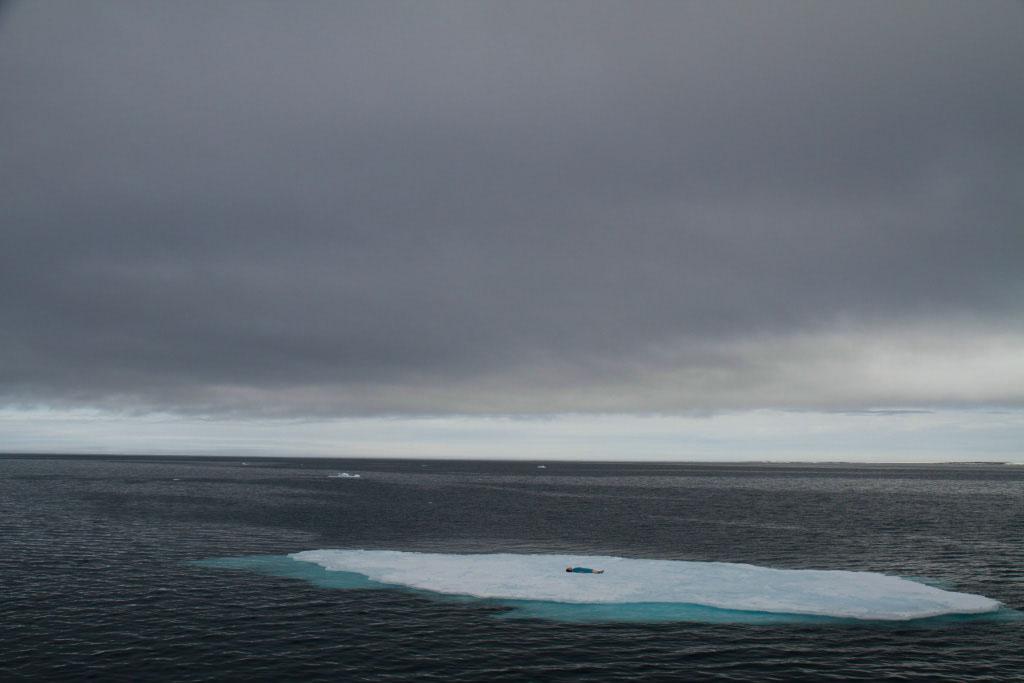 patient_iceberg_101_06-22-2013