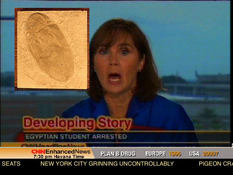 cnn_screen_sand