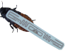 zapped_roach_high_res720px_0