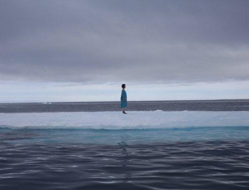 The Arctic Circle 2013